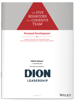 5B of a Cohesive Team Personal Development