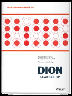 Dion Leadership-Team Dimensions Profile 2.0